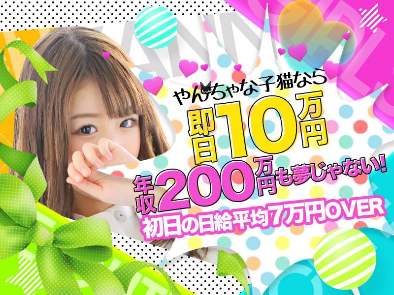 やんちゃな子猫なら即日10万円年収200万円OVERも夢じゃない♪初日の日給平均7万円OVER!